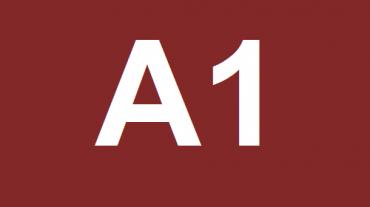 LIVELLO A1 (BEGINNER)