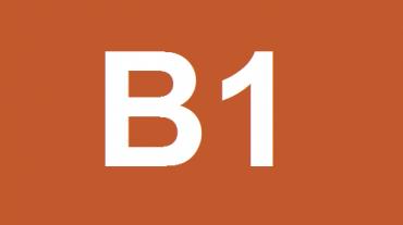 LIVELLO B1 (INTERMEDIATE)